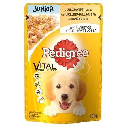 PEDIGREE Vital Protection Junior Karma pełnoporcjowa z kurczakiem i ryżem w galaretce (1)