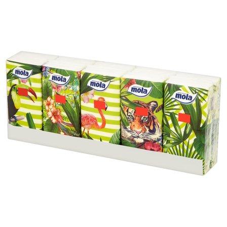 MOLA Chusteczki higieniczne 3 warstwowe (10 x 10 szt.) (1)
